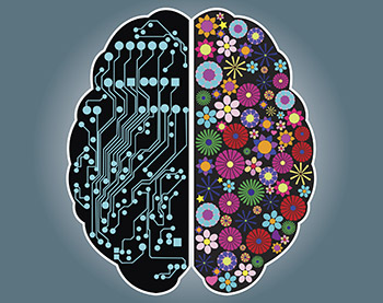 left-right-brain-350px